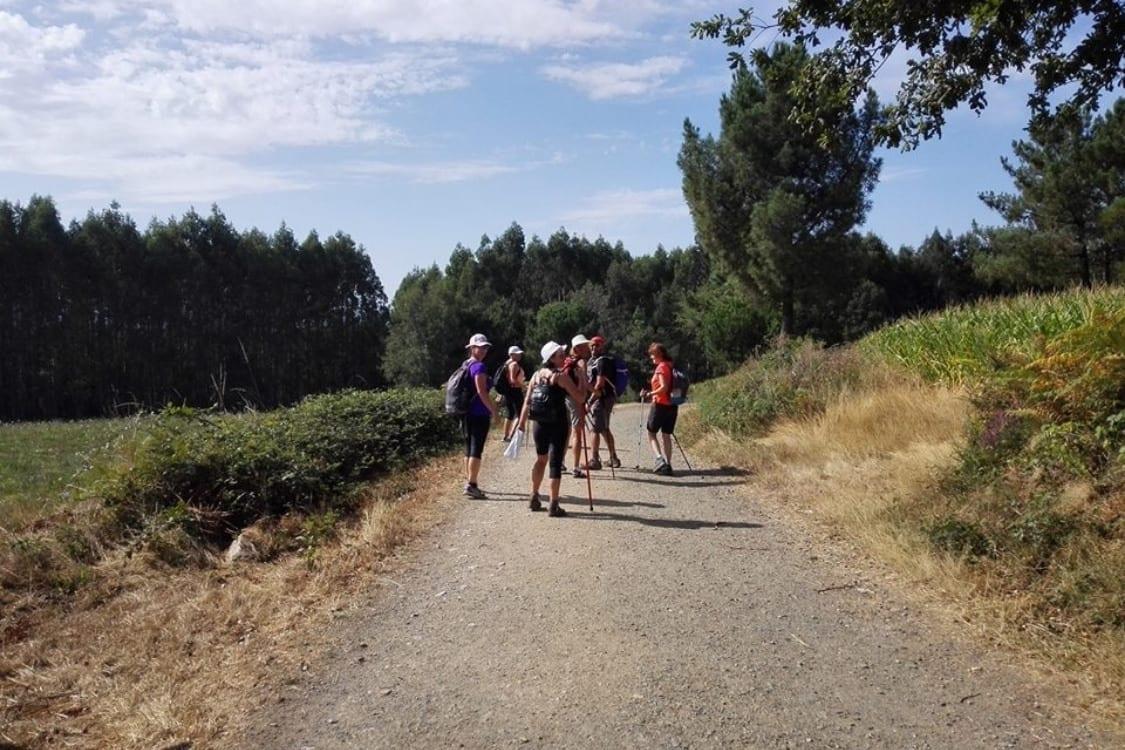 Etapas Camino Santiago grupo