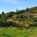 Fare il Cammino di Santiago in estate • Vantaggi e disagi
