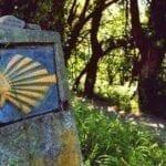 El Camino Olvidado • Historia e itinerario