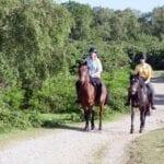 El Camino de Santiago a caballo • Consejos