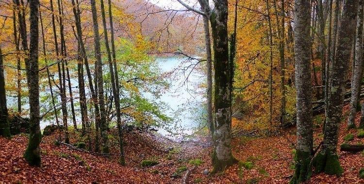 Irabia's reservoir