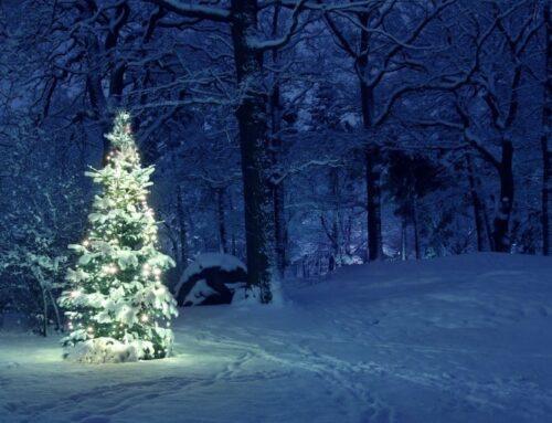 Scopri le migliori destinazioni per vedere e vivere un Natale pieno di luci