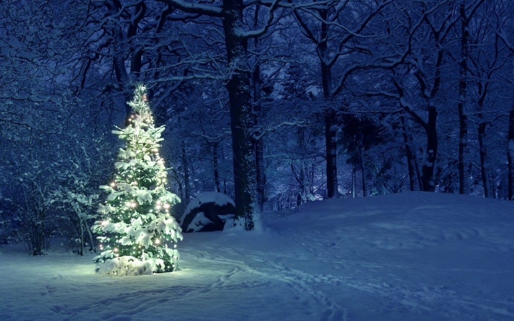 árbol de Navidad en la nieve