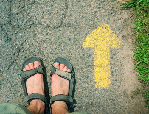 Hacer el Camino de Santiago en Agosto, una buena alternativa para un verano caluroso.